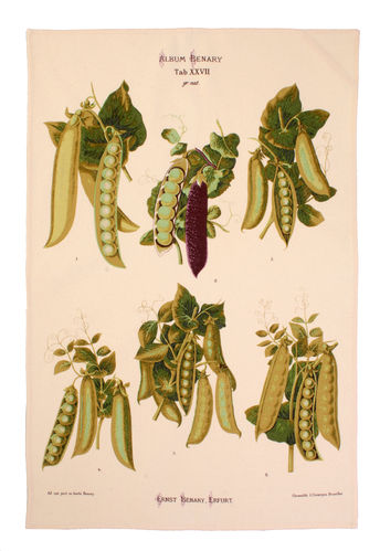 "Geschirrtuch ""Peas"" RHS von Ulster Weavers. Cotton Tea Towel"