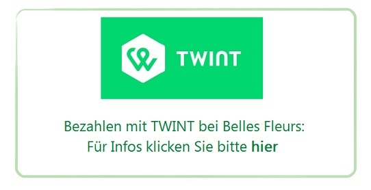twint_button